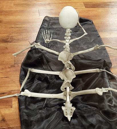 ArachNed Halloween Decoration 2019