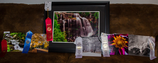 2015 Photography Competition
